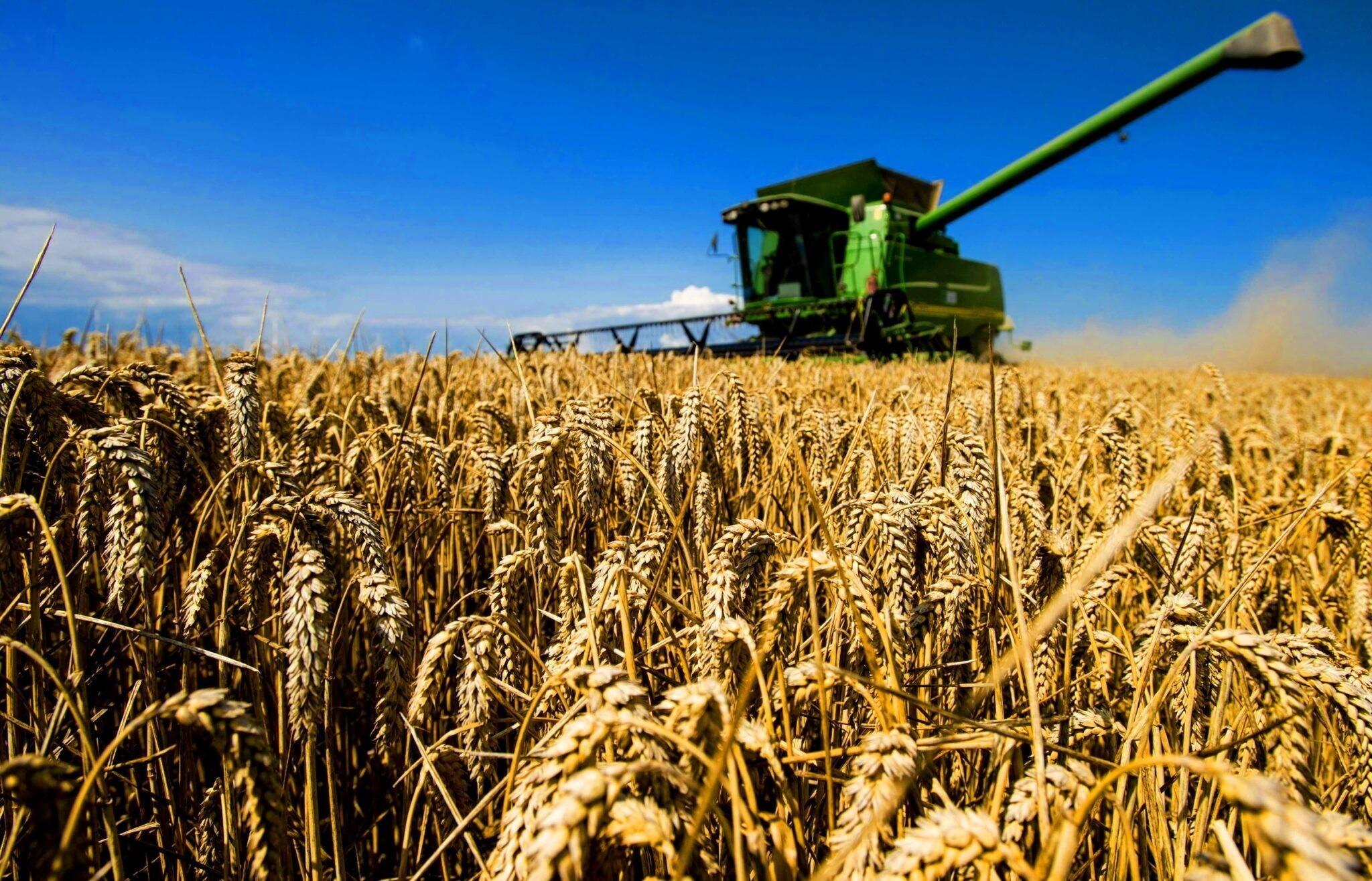 Костанайские сельхозтоваропроизводители получат пролонгацию кредитов