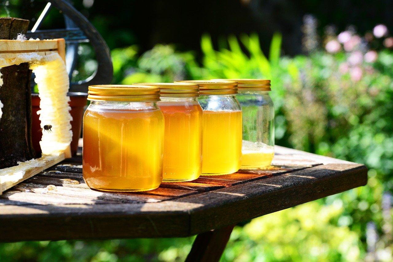Пчеловоды ВКО просят у государства дотации на транспорт и оборудование
