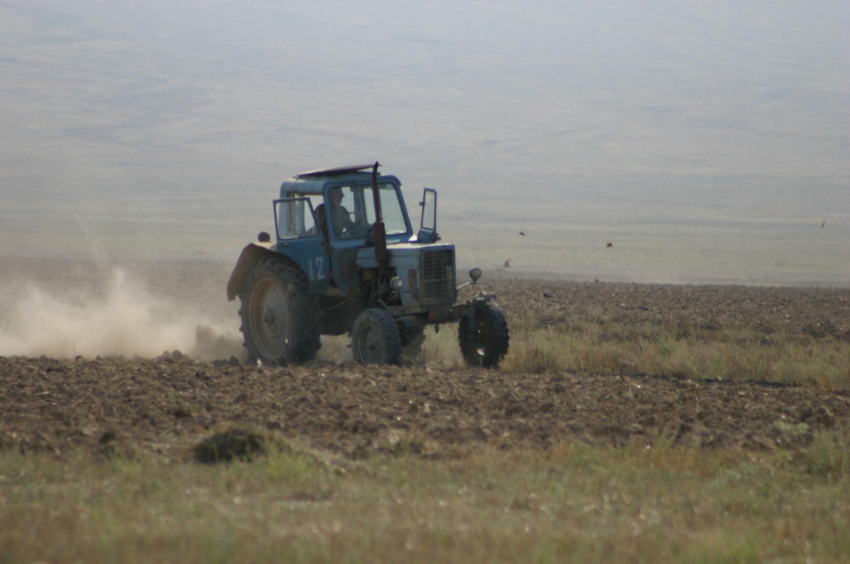 Түркістандық шаруалар 5,7 млрд теңге қарыз алды