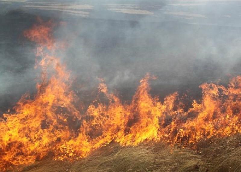 Сухая трава воспламенилась в пойме Иртыша и на дачных участках
