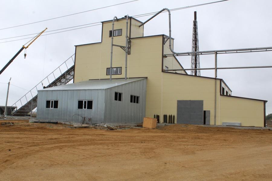 Производство растительного масла планируют запустить в Акмолинской области