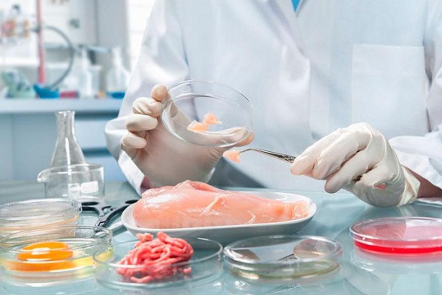 В РК планируют открыть лаборатории для анализа пищевых продуктов и кормов