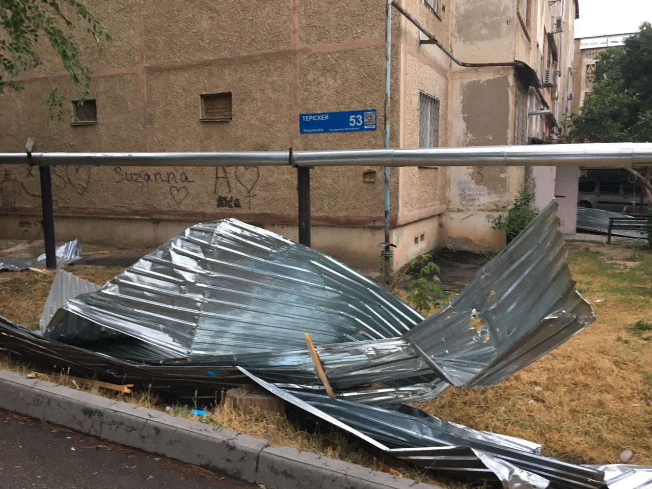 Сильный ветер в Шымкенте снес кровли домов и повалил деревья