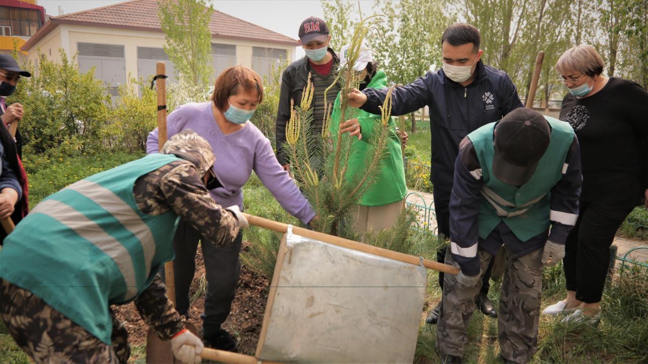 Елорда тұрғындары «Өз ағашыңды отырғыз» челленджін бастады