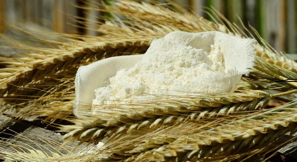 Отечественные зернопереработчики предрекают скорую гибель отрасли