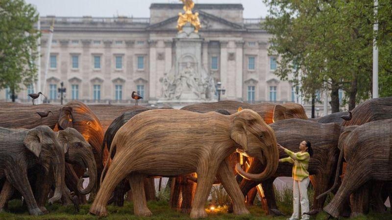 Деревянное стадо слонов пригнали к Букингемскому дворцу