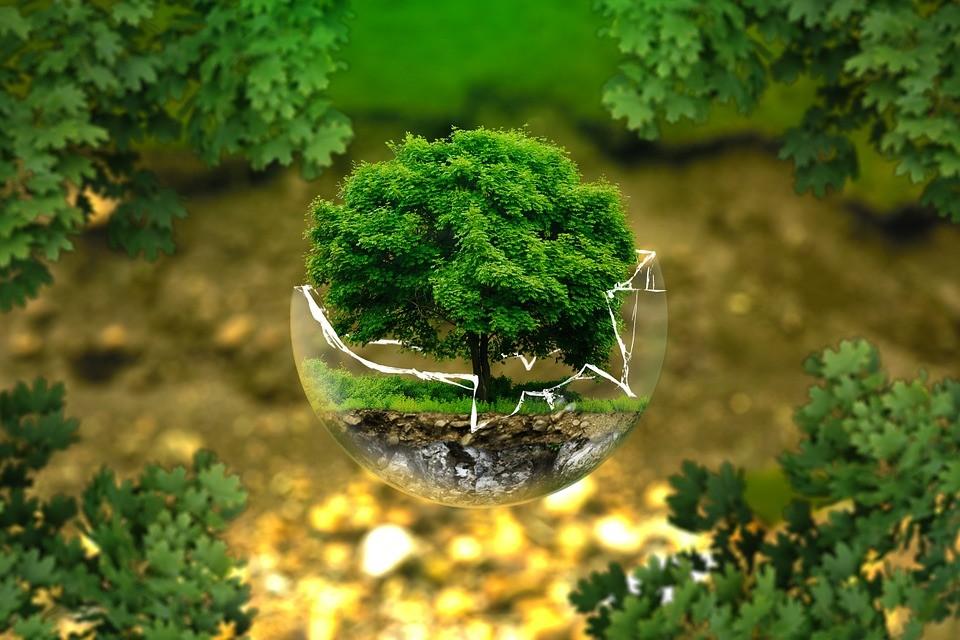 Токаев поздравил казахстанцев с Днём защиты окружающей среды