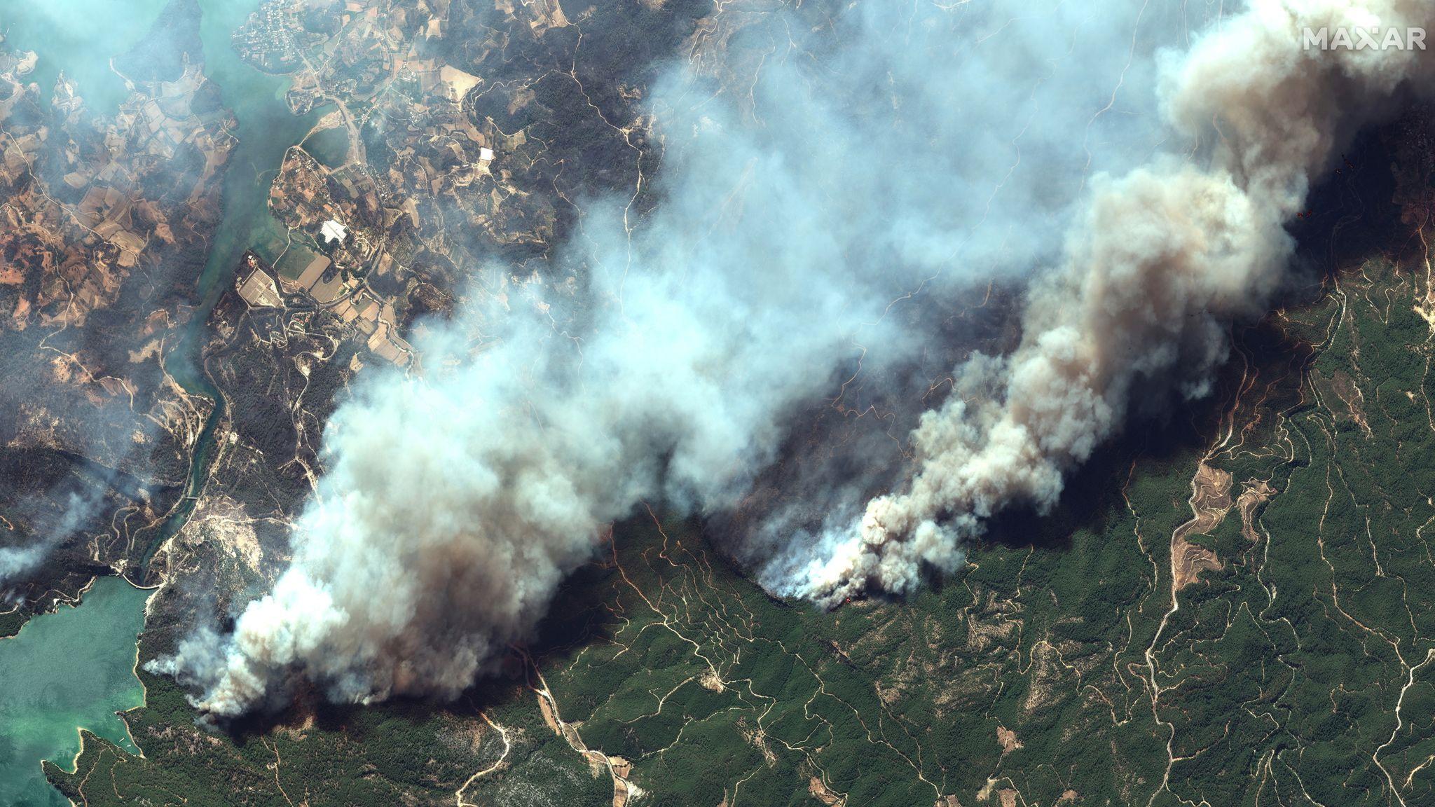 В Турции удалось взять под контроль распространение более 100 лесных пожаров