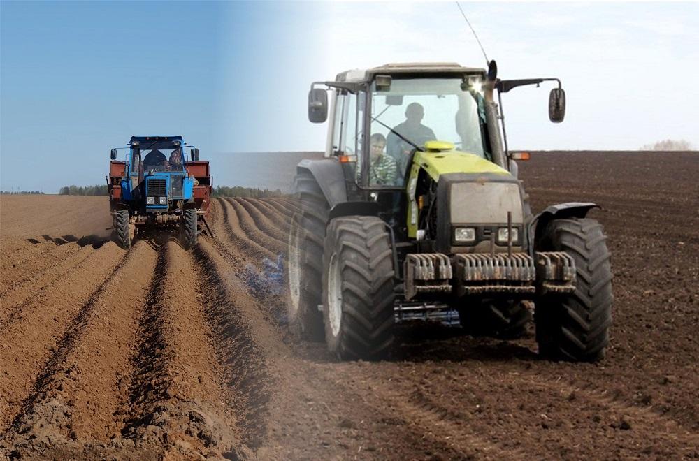 В ВКО стали меньше выращивать зерна и кормов
