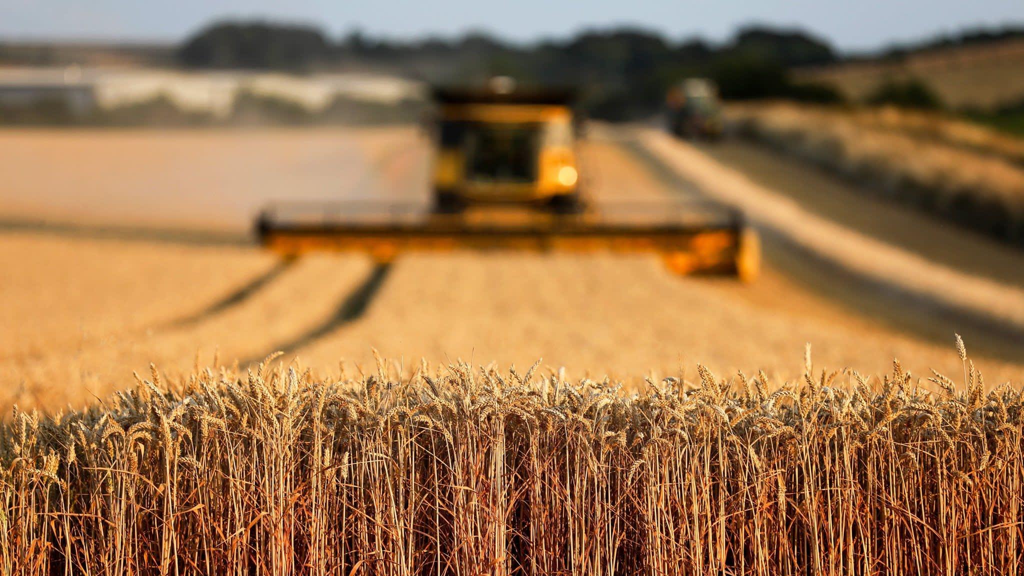Большая часть инвестиций в Северо-Казахстанской области идет в сельское хозяйство