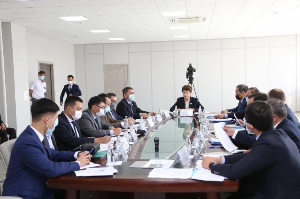 Сенаторы обсудили проблемы таможенного администрирования