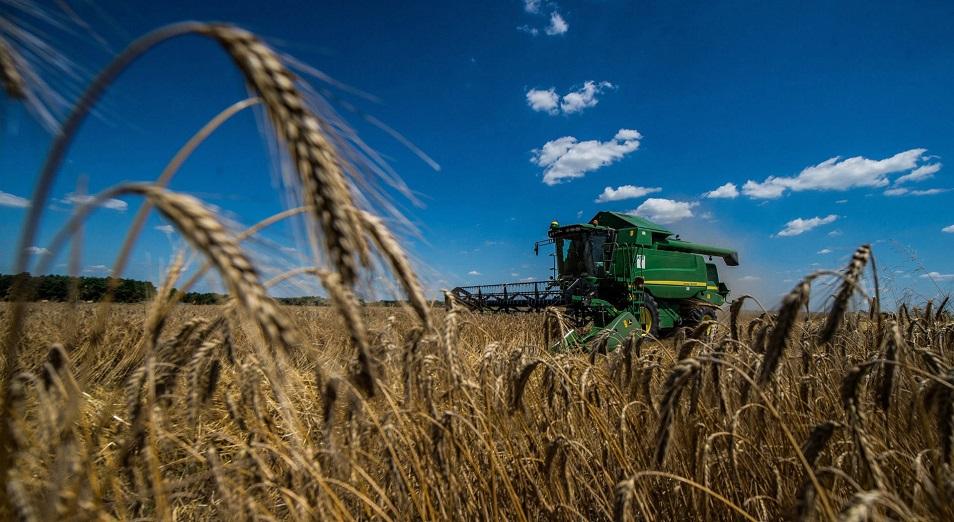 В казахстанском сельском хозяйстве наметился разлад между зернотрейдерами и мукомолами