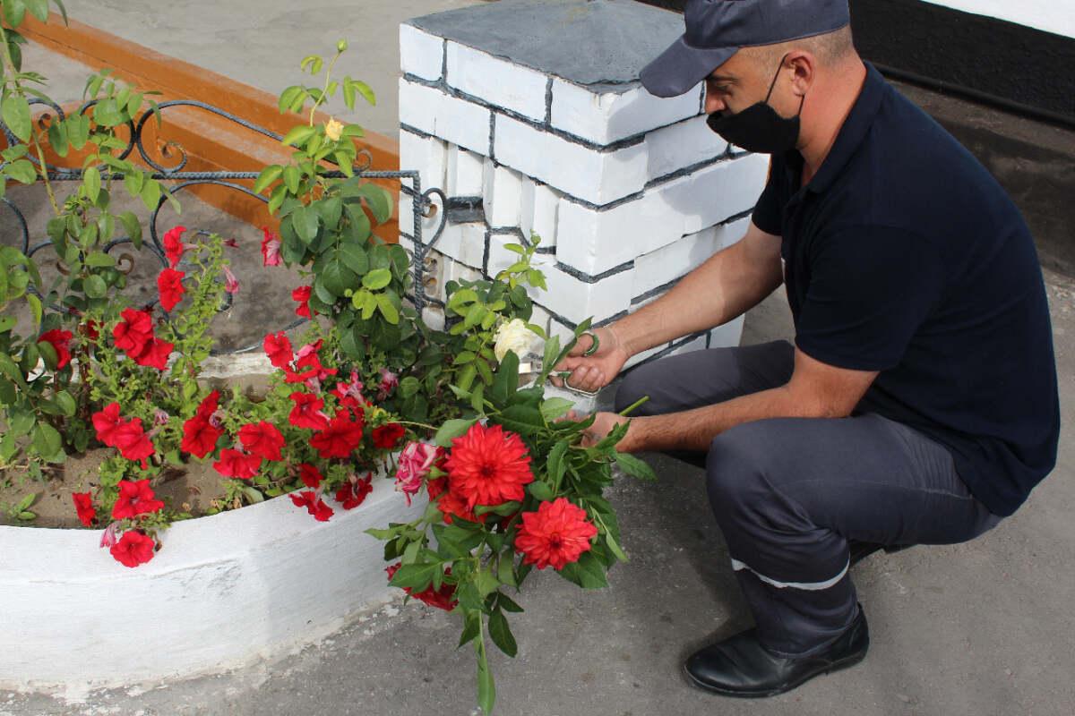 Цветы, выращенные в колонии, отправили своим мамам павлодарские осужденные