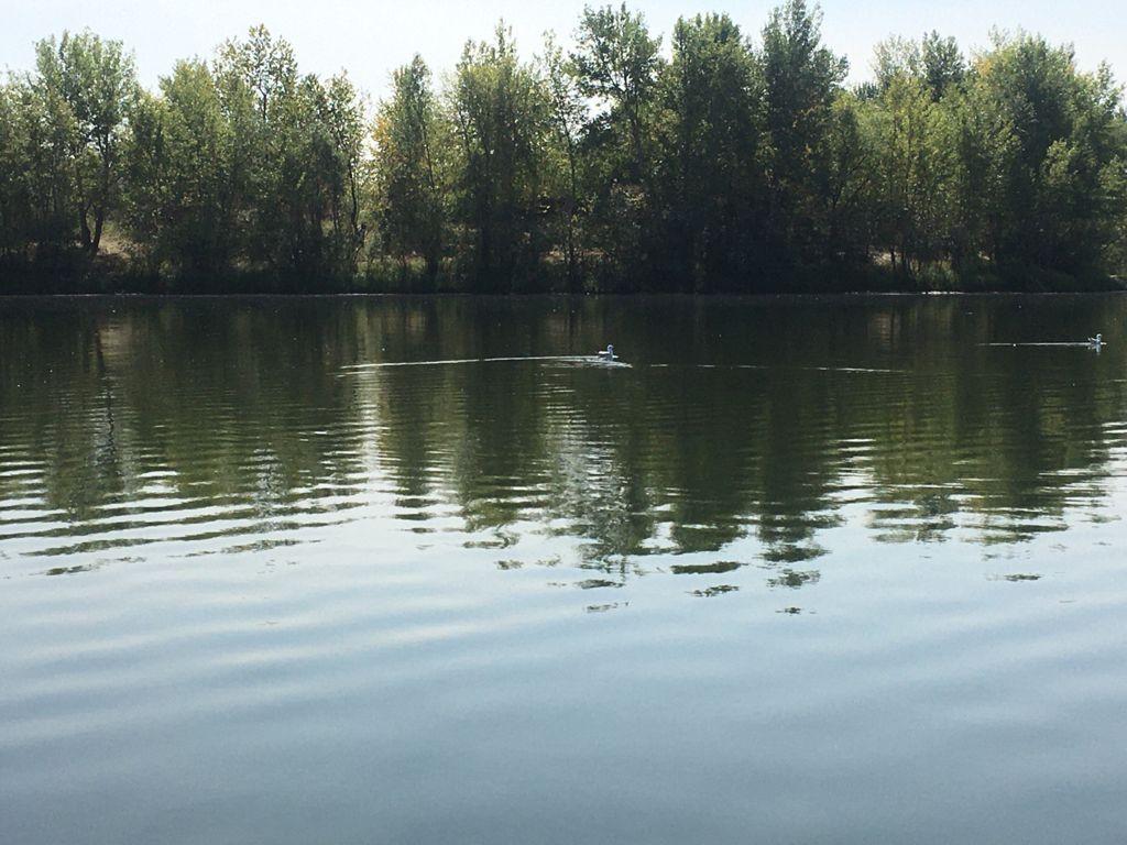 Получают ли омичи из Казахстана ртуть по воде?