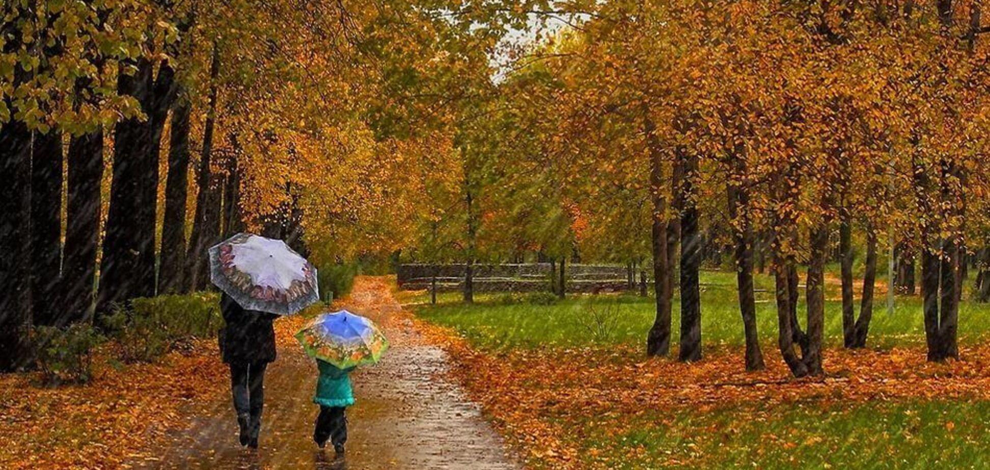 Прогноз погоды: на севере и востоке страны ожидается дождь
