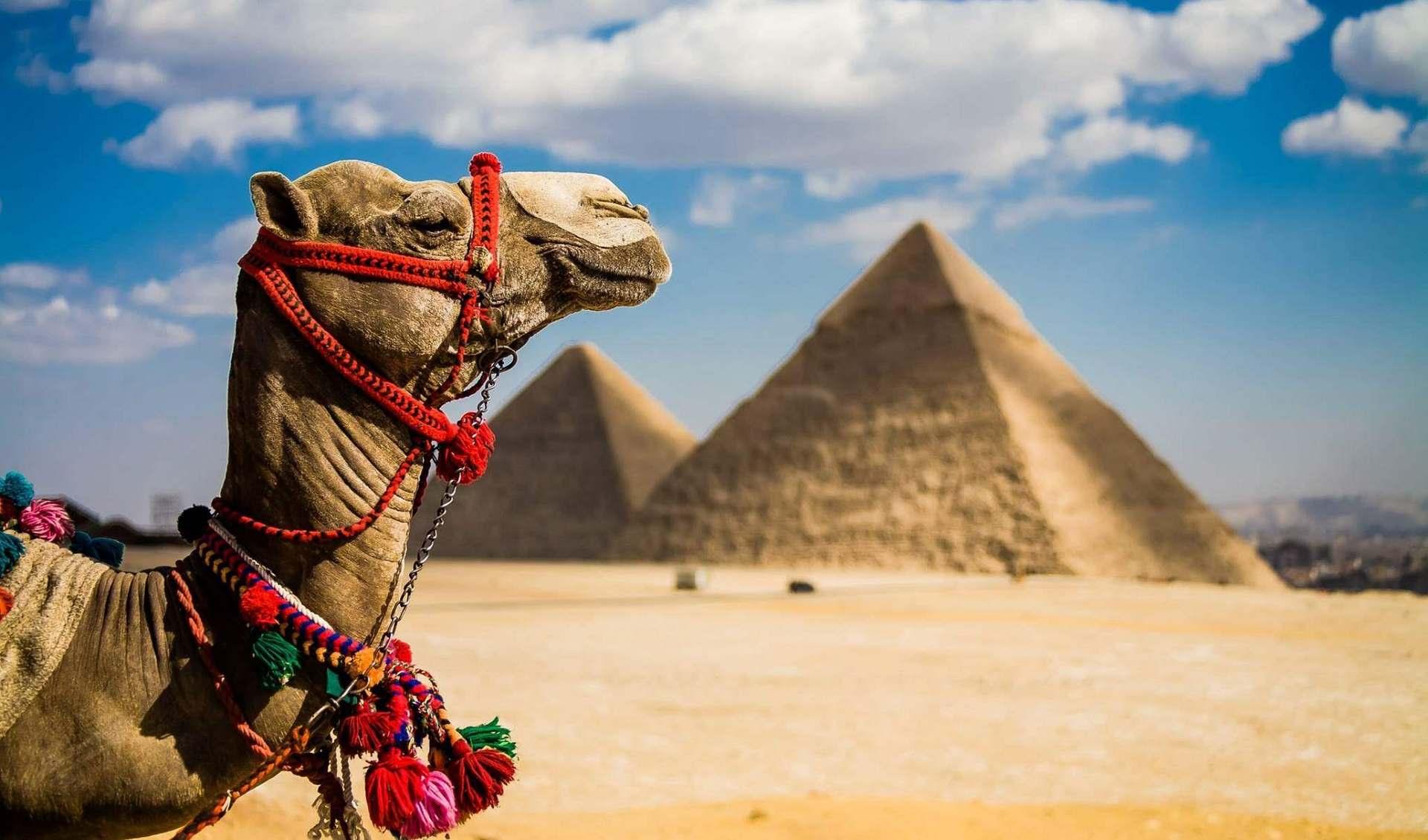 Два новых тургорода откроют в Египте