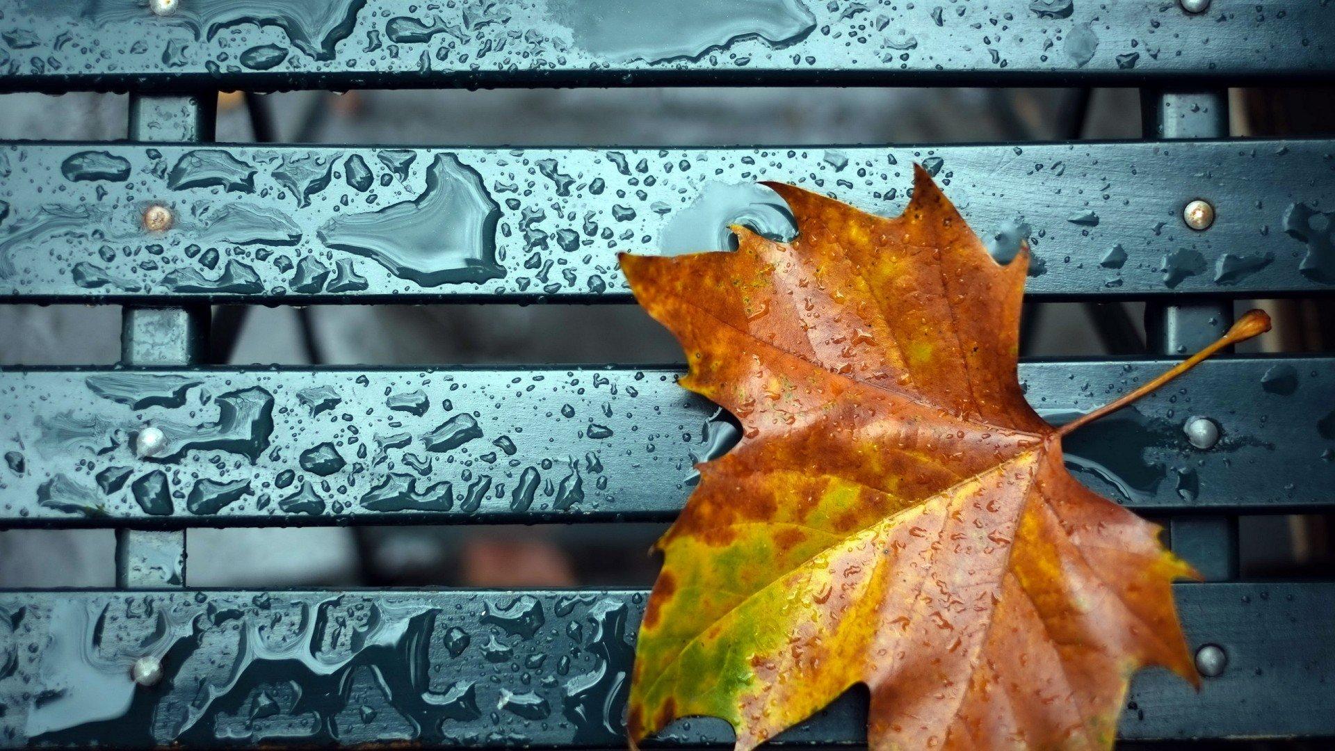 Дожди и похолодание придут в Казахстан