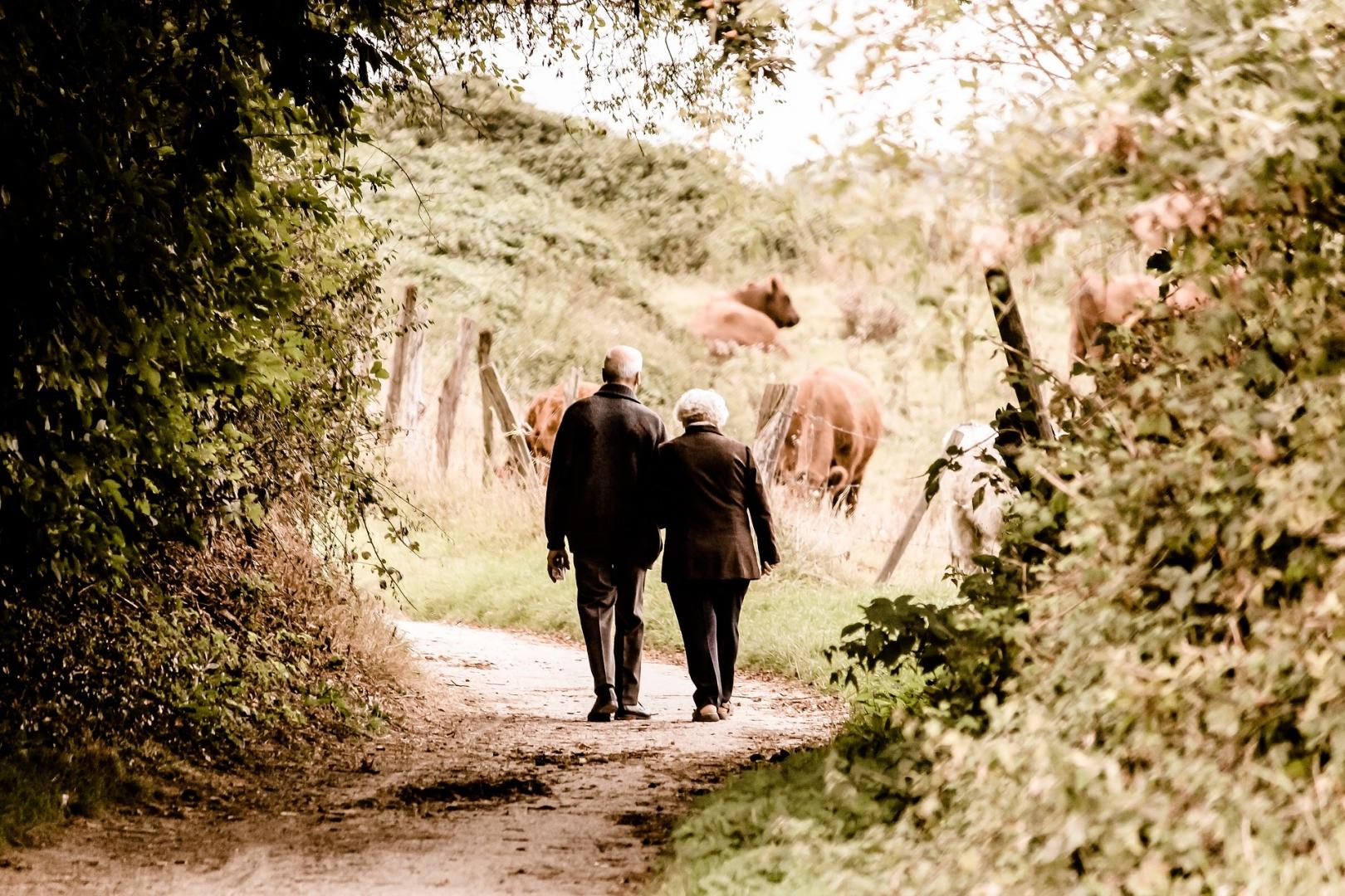 Число пожилых людей достигло рекордных показателей в Японии