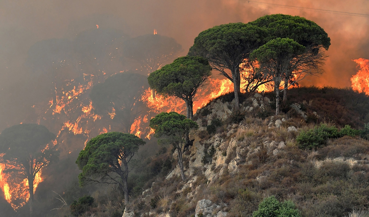 Берега Средиземного моря в огне