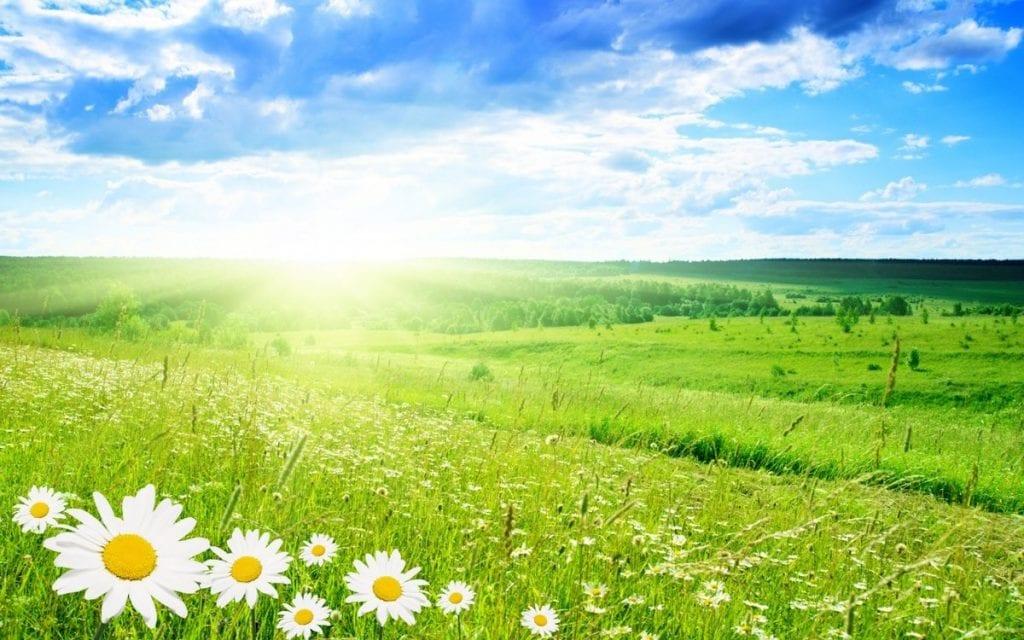 Какой будет погода в Казахстане на выходных