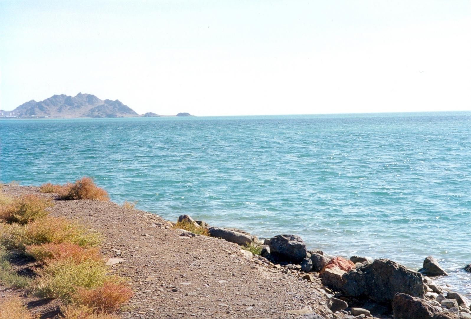 Мажилис принял законопроект об экологической защите Каспия