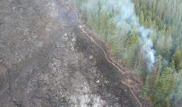 Крупный лесной пожар тушат в Аксайском ущелье
