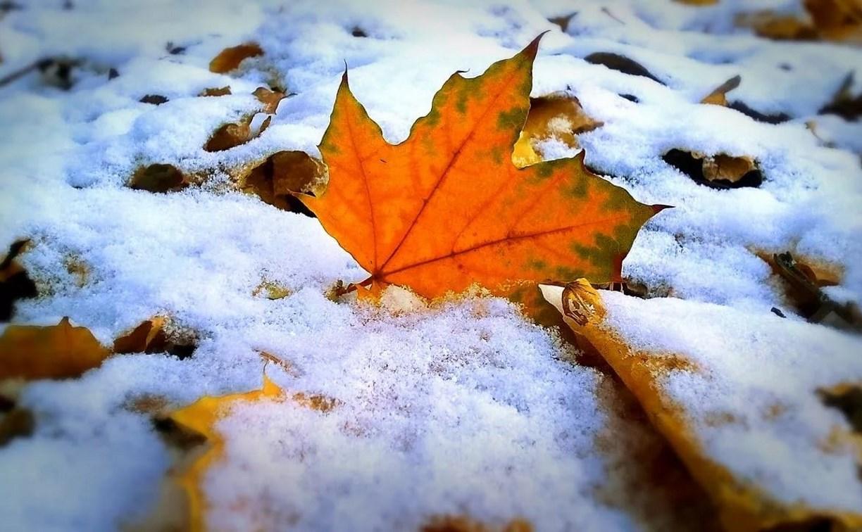 В Алматы – пыльная буря, в Костанае – первый снег