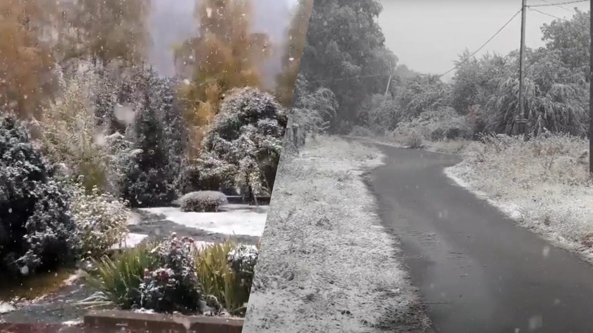 Сколько снега выпало в Алматы