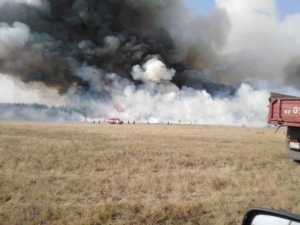 Крупный лесной пожар тушили около Кокшетау