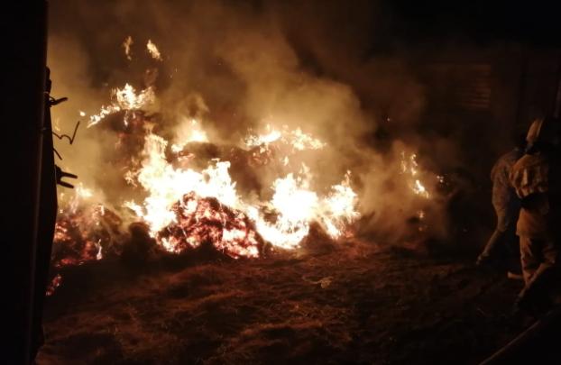 Трое детей сгорели в сене в Атырауской области