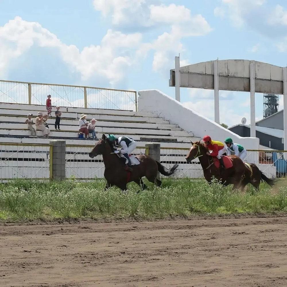 Североказахстанских жокеев возмутил размер призовых за скачки