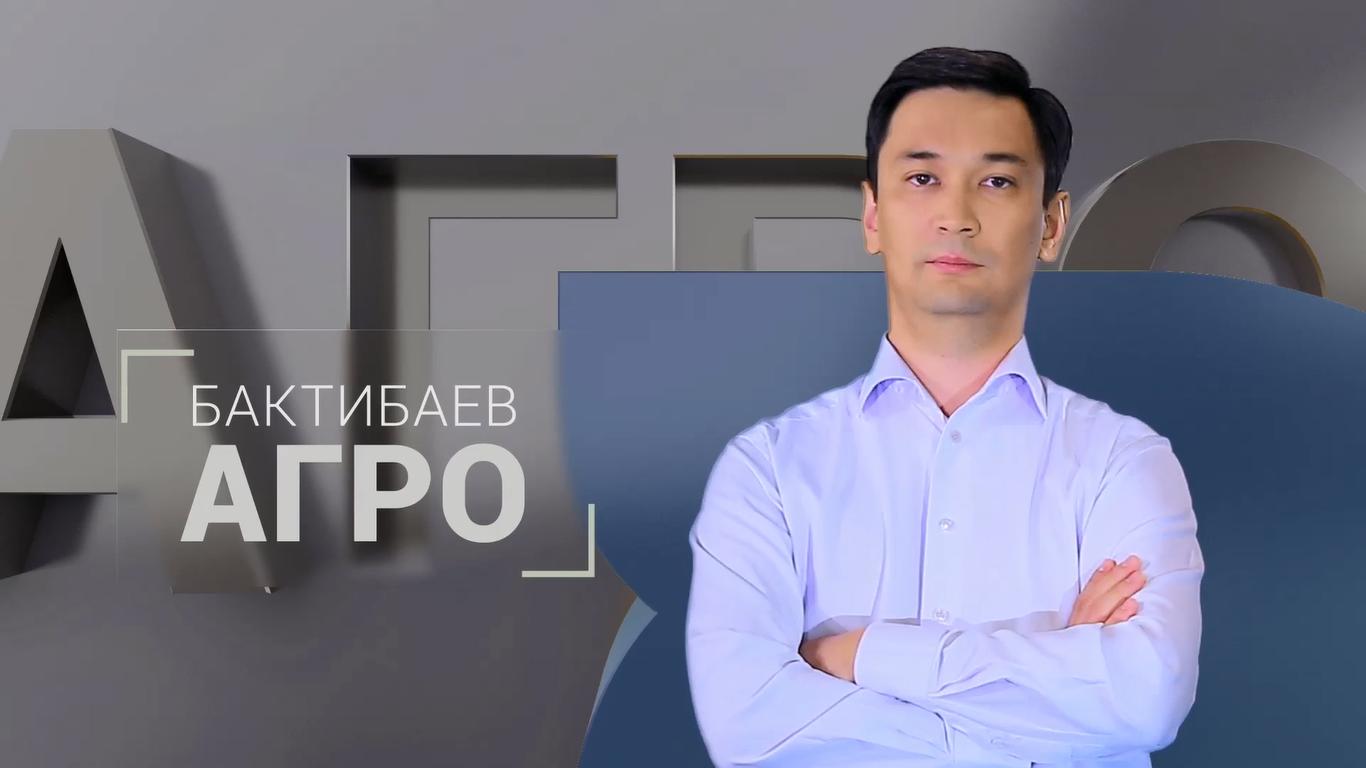 https://inbusiness.kz/ru/images/programbig/19/images/rZmPL2MW.png