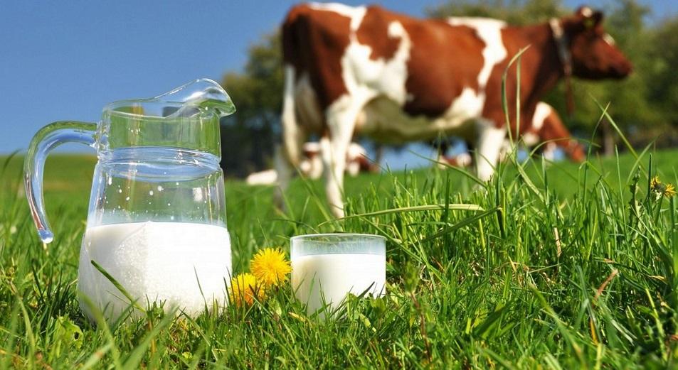 Молоко доставит Казпочта