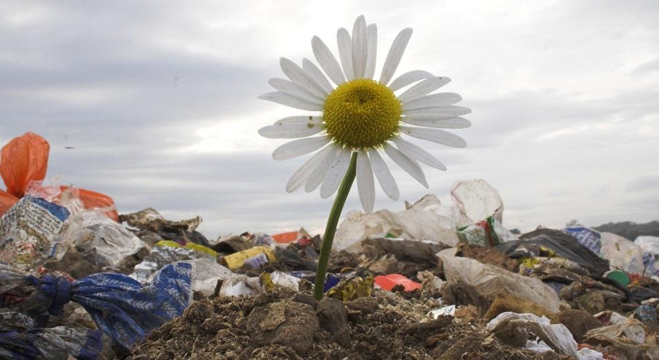 Завод по утилизации отходов построят корейские инвесторы в Казахстане