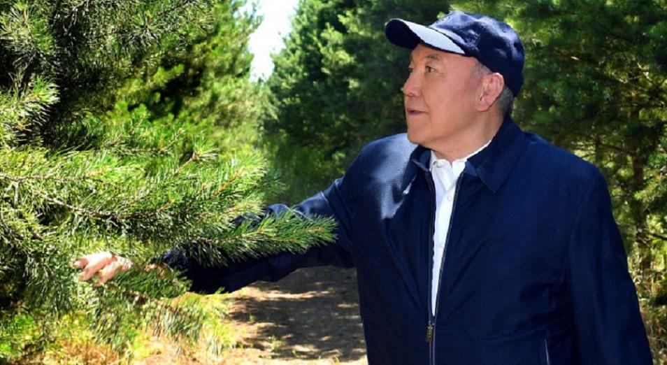 Нурсултан Назарбаев: «Мы строим лес для будущих поколений»