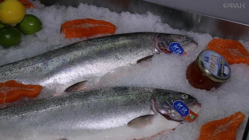 В Астану на ярмарку привезут более 20 тонн рыбы