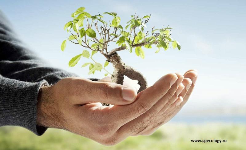 В Казахстане будет создан рейтинг «зелёных» предприятий