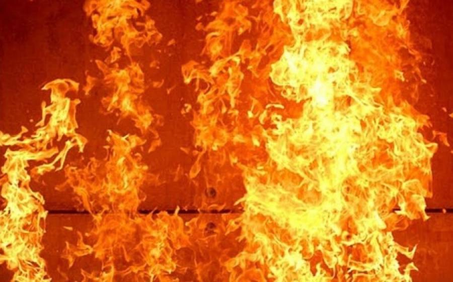 Сильный пожар уничтожил 30 дачных домов под Уральском