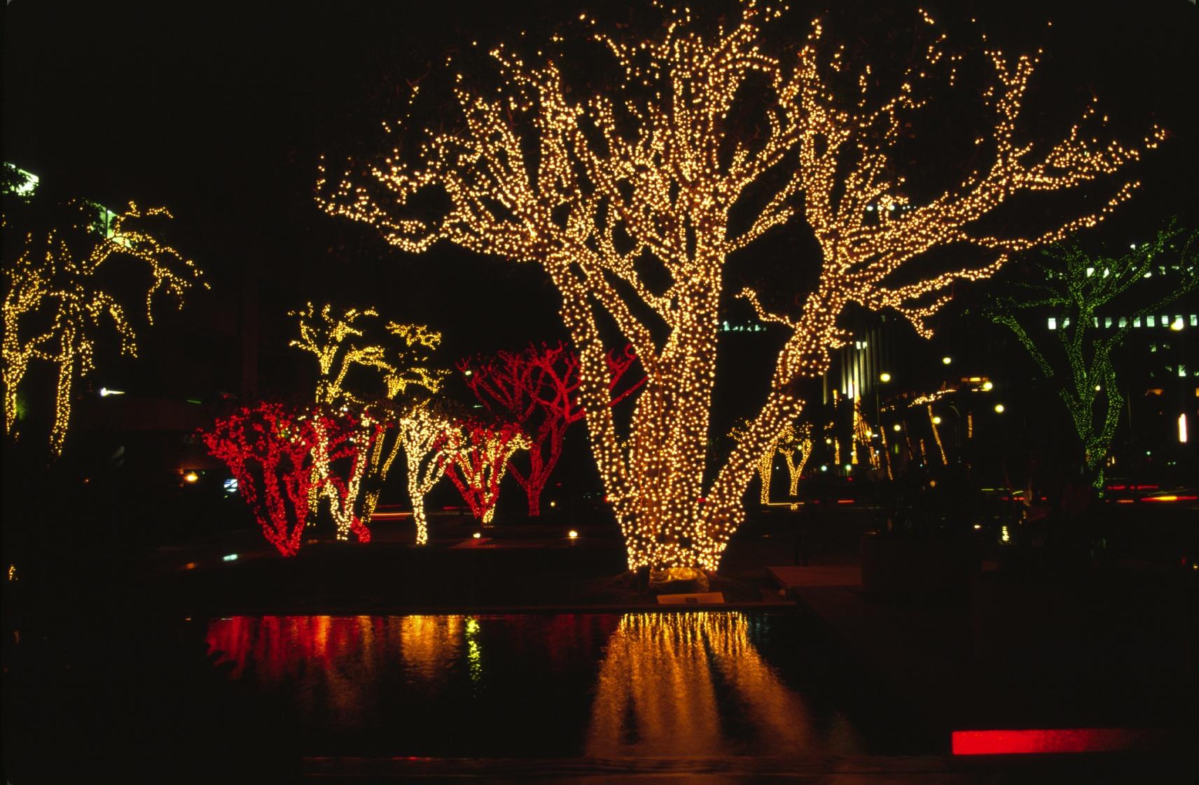 На новогоднее оформление мы не можем много тратить – аким СКО