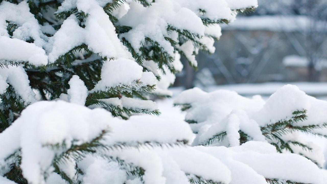 Погода в РК: снег и гололед ожидаются на севере и востоке Казахстана