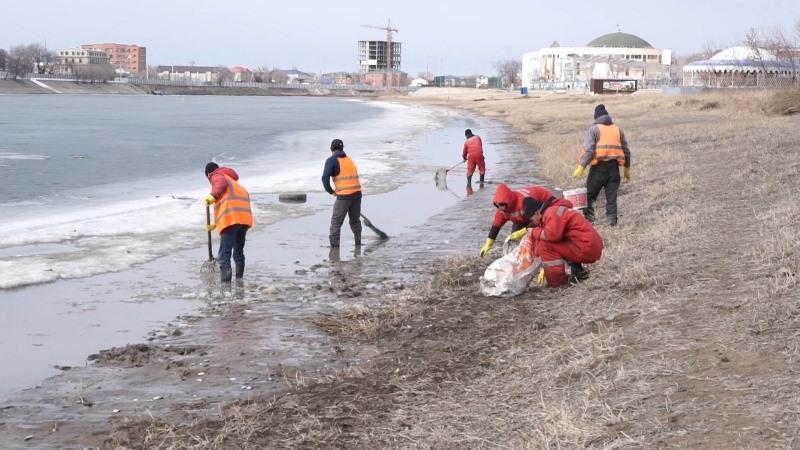 От мертвой рыбы очищают Урал в Атырау