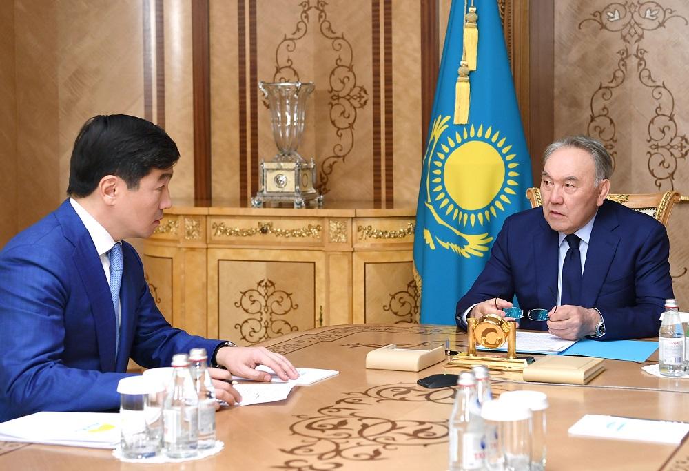 Нурсултан Назарбаев поблагодарил бизнес-сообщество за поддержку фонда Birgemiz