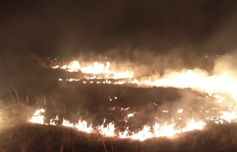 За сутки зарегистрировано 27 случаев возгораний степных массивов в ВКО