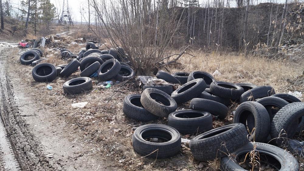 В Казахстане в 2019 году сокращен сбор отходов упаковки и автокомпонентов на 11%