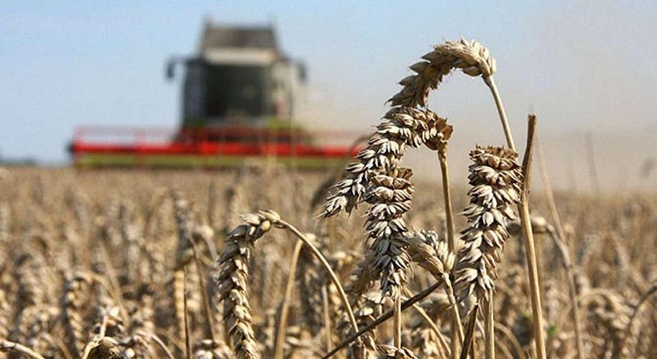 Аграрные расписки: новая авантюра или благое дело?!