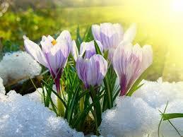 Погода в РК: первый день весны синоптики прогнозируют без осадков