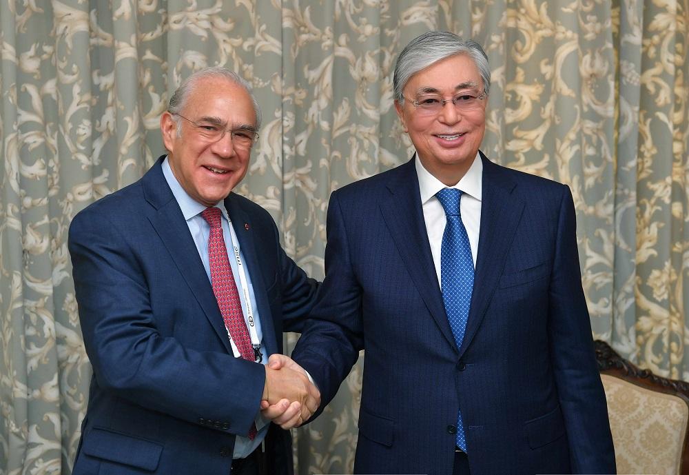 Сотрудничество между Казахстаном и ОЭСР обсудили Токаев и Гурриа