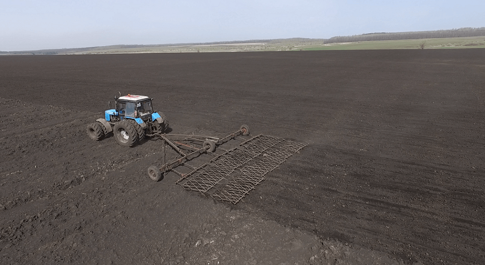Биыл егістік көлемі 291 мың гектарға көбейеді