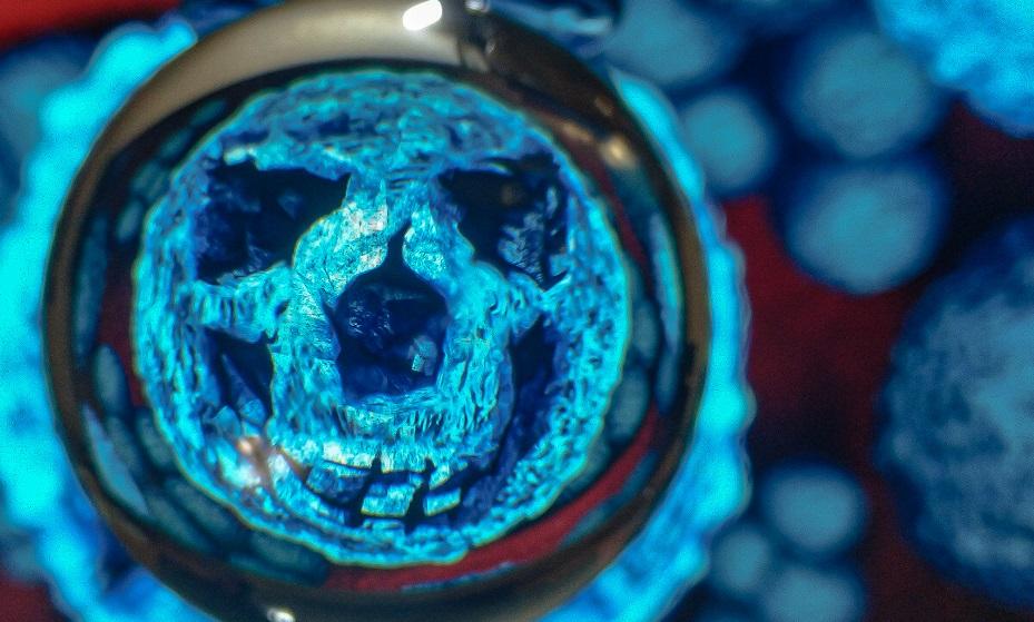 Жамбыл облысында коронавирус жұқтырғандардың үшеуі де Қырғызстаннан келген