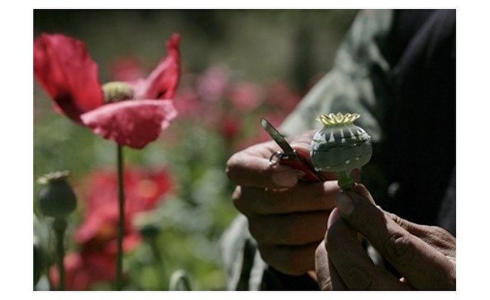 Полицейские РК пресекли легализацию наркодоходов свыше чем на 1 млн тенге